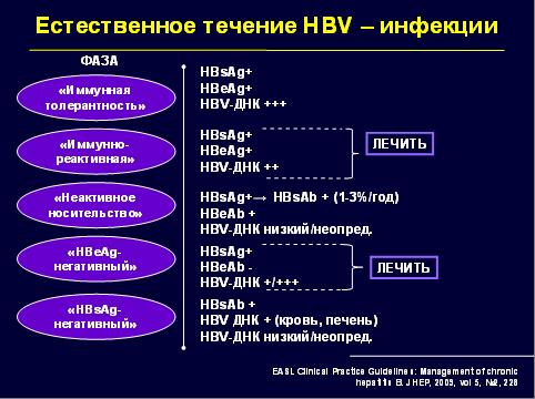 Естественное течение HBV-инфекции