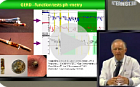 GERD - clinical spectrum. Challenges in managment. (russian)
